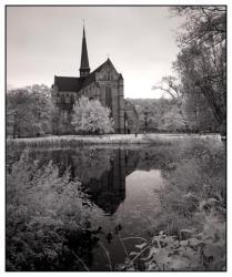 Kloster Dargun (5)