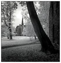 Kloster Dargun (6)